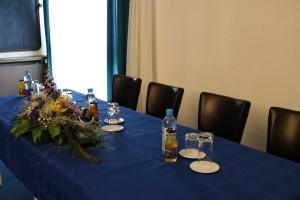 Congress hall Hotel Medena (4)